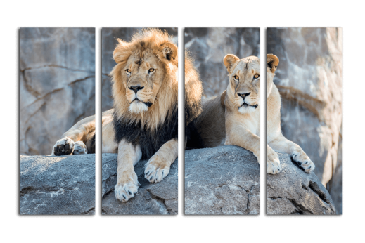 Модульная картина Львы на скале
